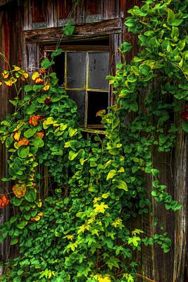 Back Window Art Print by Russ Burch