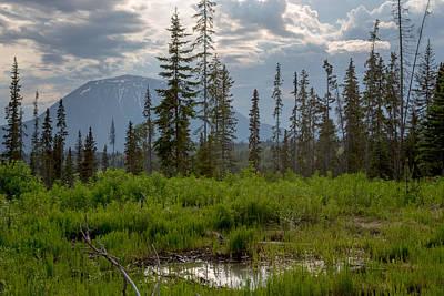 Photograph - Backcountry by Ryan Heffron
