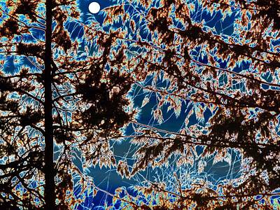 Digital Art - Backlit By A Full Moon by Will Borden