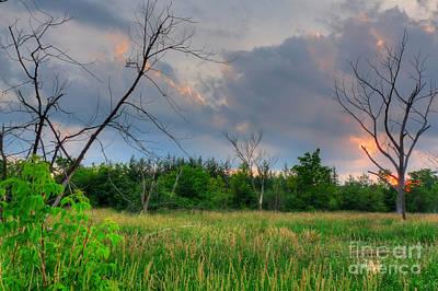 Photograph - Backlit Sunset Swamp by Deborah Smolinske