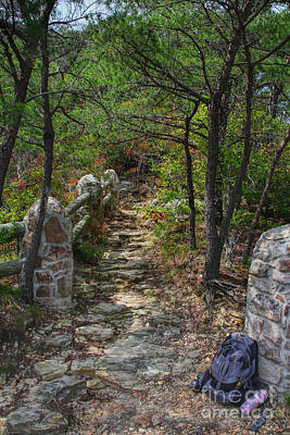 Photograph - Backpack Resting Along The Trail by Barbara Bowen