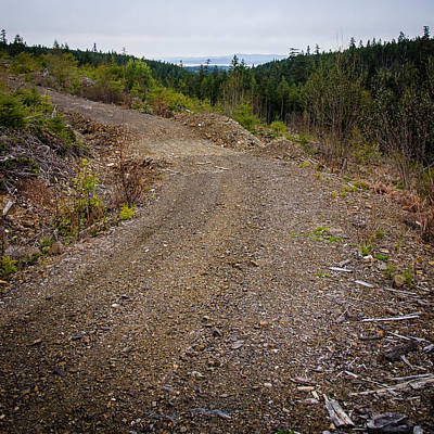 Photograph - 4x4 Logging Road To Adventure by Roxy Hurtubise