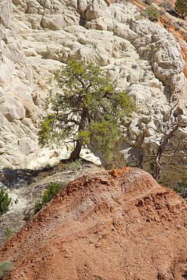 Backroad Photograph - Backroads Utah 5 by Mike McGlothlen