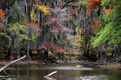 Sawmill Photograph - Backwater Autumn by Lana Trussell