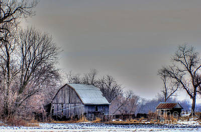 Photograph - Backwoods Barn by Thomas Danilovich