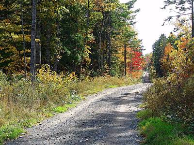 Gravel Road Mixed Media - Backwoods Road In Autumn by Janet Ashworth