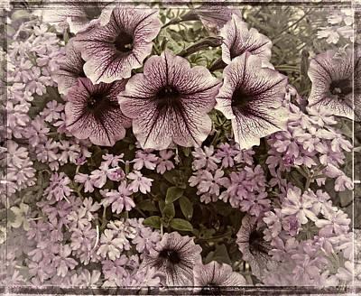 Photograph - Backyard Floral by Thom Zehrfeld