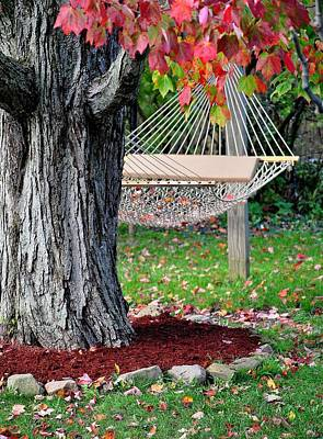 Photograph - Backyard Hammock by Frozen in Time Fine Art Photography