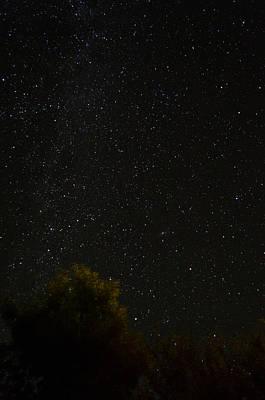 Photograph - Backyard Skyscape by Alan Marlowe