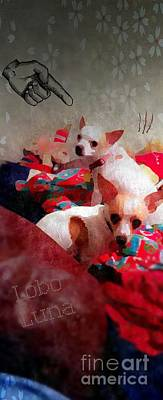 Teacup Chihuahua Photograph - Bad Dogs by Denisse Del Mar Guevara