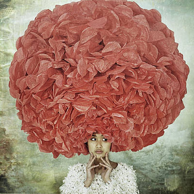 Flower Head Wall Art - Photograph - Bad Hair Day by Kenp
