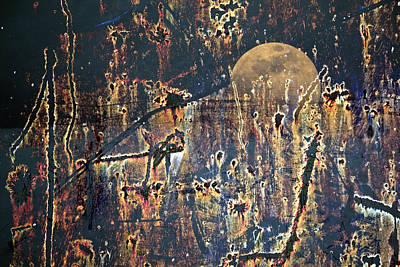 Photograph - Bad Moon Rising by John Stephens