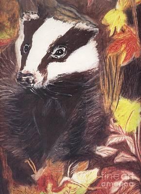 Badger In The Fall. Art Print by Ann Fellows