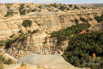 Photograph - Badlands At Roosevelt by Adam Jewell