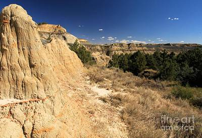 Photograph - Badlands Canyon by Adam Jewell