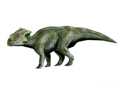 Triassic Digital Art - Bagaceratops Dinosaur by Nobumichi Tamura