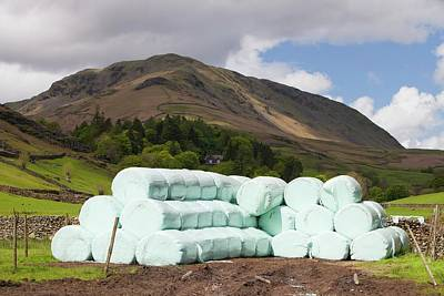 Bags Of Silage On A Farm Art Print by Ashley Cooper