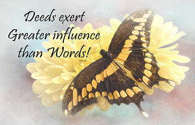 Positive Attitude Photograph - Bahai Butterfly Quote by Rudy Umans