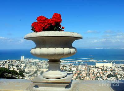 Photograph - Bahai's Garden - Haifa by Jason Sentuf