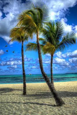 Photograph - Bahama Breeze by Paul Wear