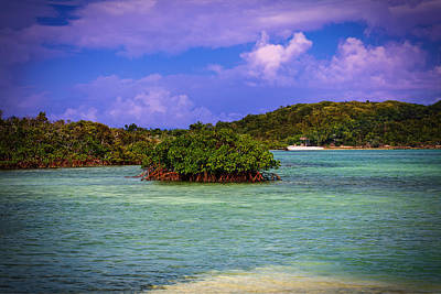 Bahamas-half Moon Cay Lost Lagoon Art Print by Eti Reid