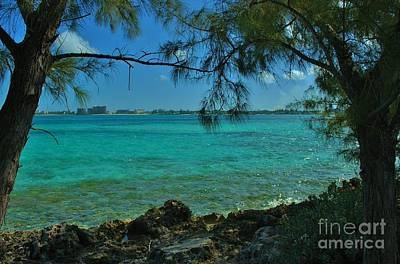 Photograph - Bahamas Shade by Bob Sample