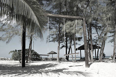 Photograph - Bahamas Swings by Bob Sample