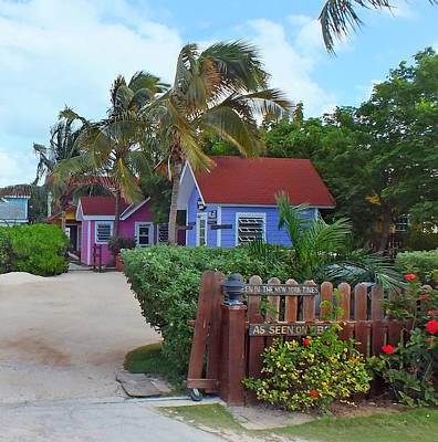 Photograph - Bahamian Cottages In Hatchet Bay by Duane McCullough