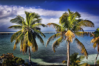 Photograph - Bahia Honda by Ellen Heaverlo
