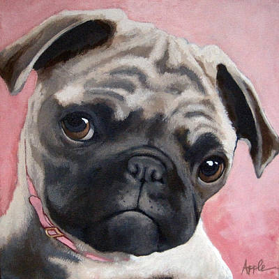 Bailey Art Print by Linda Apple