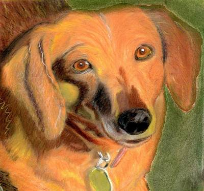Weiner Dog Painting - Bailey by Patrick McClellan