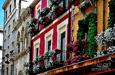Flowers White Vine Digital Art - Balconies Of Leon - Digital Painting by Mary Machare