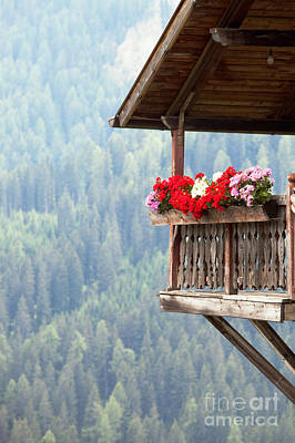 Mountains Photograph - Balcony Overlooking The Forest by Matteo Colombo