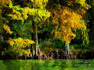 Photograph - Bald Cypress 2 - Digital Effect by Debbie Portwood