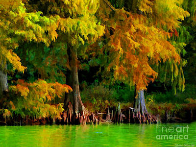 Photograph - Bald Cypress 4 - Digital Effect by Debbie Portwood