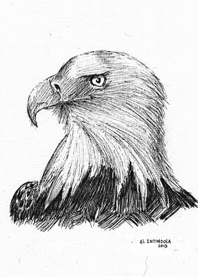 Drawing - Bald Eagle by Al Intindola