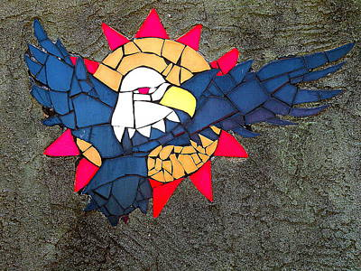 Photograph - Bald Eagle And Sun Mosaic by Brian Chase