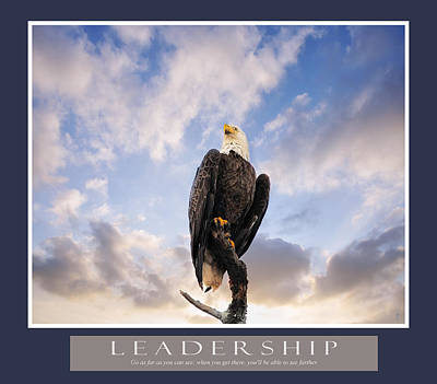 Photograph - Bald Eagle Motivational Leadership Print by Jai Johnson