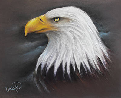 Art Print featuring the drawing Bald Eagle by Patricia Lintner