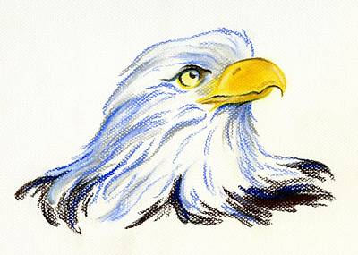 Pastel - Bald Eagle Portrait by MM Anderson
