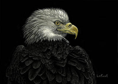 Drawing - American Bald Eagle by Sandra LaFaut