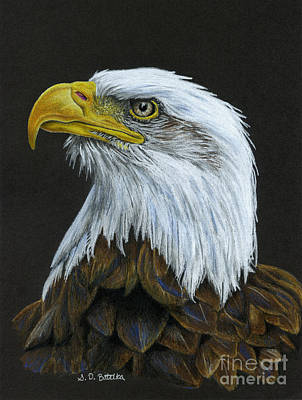 Black Background Painting - Bald Eagle by Sarah Batalka