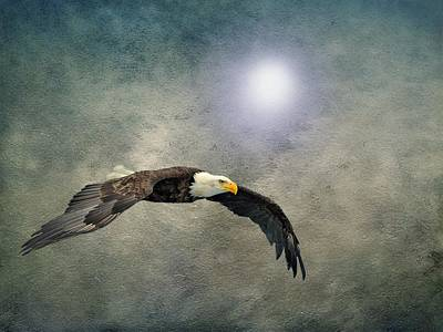 Photograph - Bald Eagle Textured Art by David Dehner