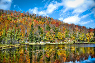 Tree Photograph - Bald Mountain Pond In The Fall by David Patterson