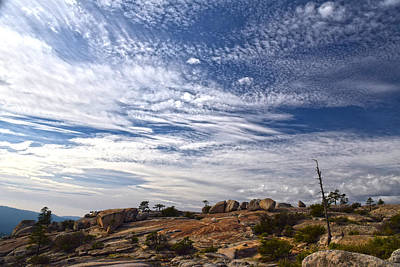 Photograph - Bald Rock Glacial Erratics by Frank Wilson