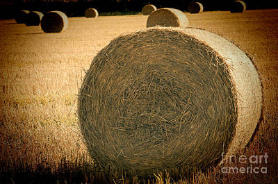 Photograph - Baled Out 2 by Steve Purnell