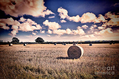 Photograph - Baled Out by Steve Purnell