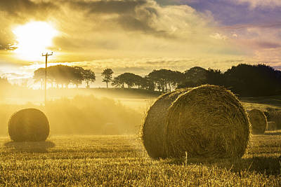 Photograph - Bales In The Morning Mist by Veli Bariskan