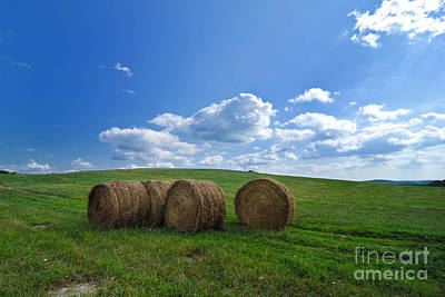 Bales Of Hay In A Field Print by Amy Cicconi