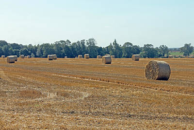 Photograph - Bales Of Hay by Tony Murtagh